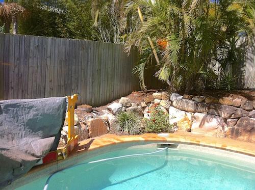 Palm tree stumps next to Brisbane pool