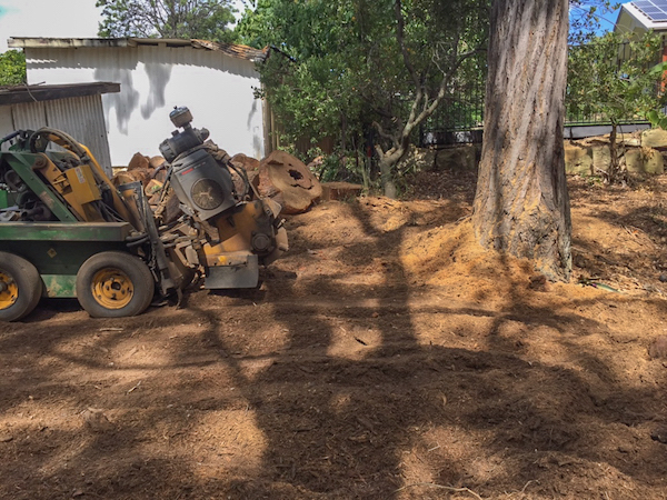 Large stump grinding machine next to mulch